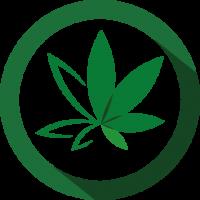 Selection_logos formation cannabis